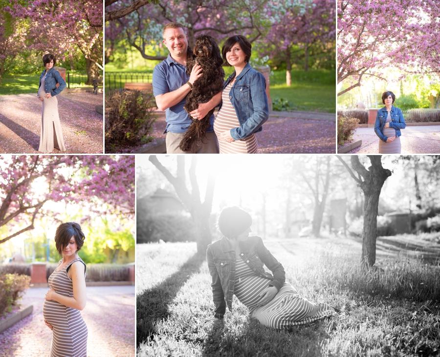 Edmonton Maternity Photographer 2
