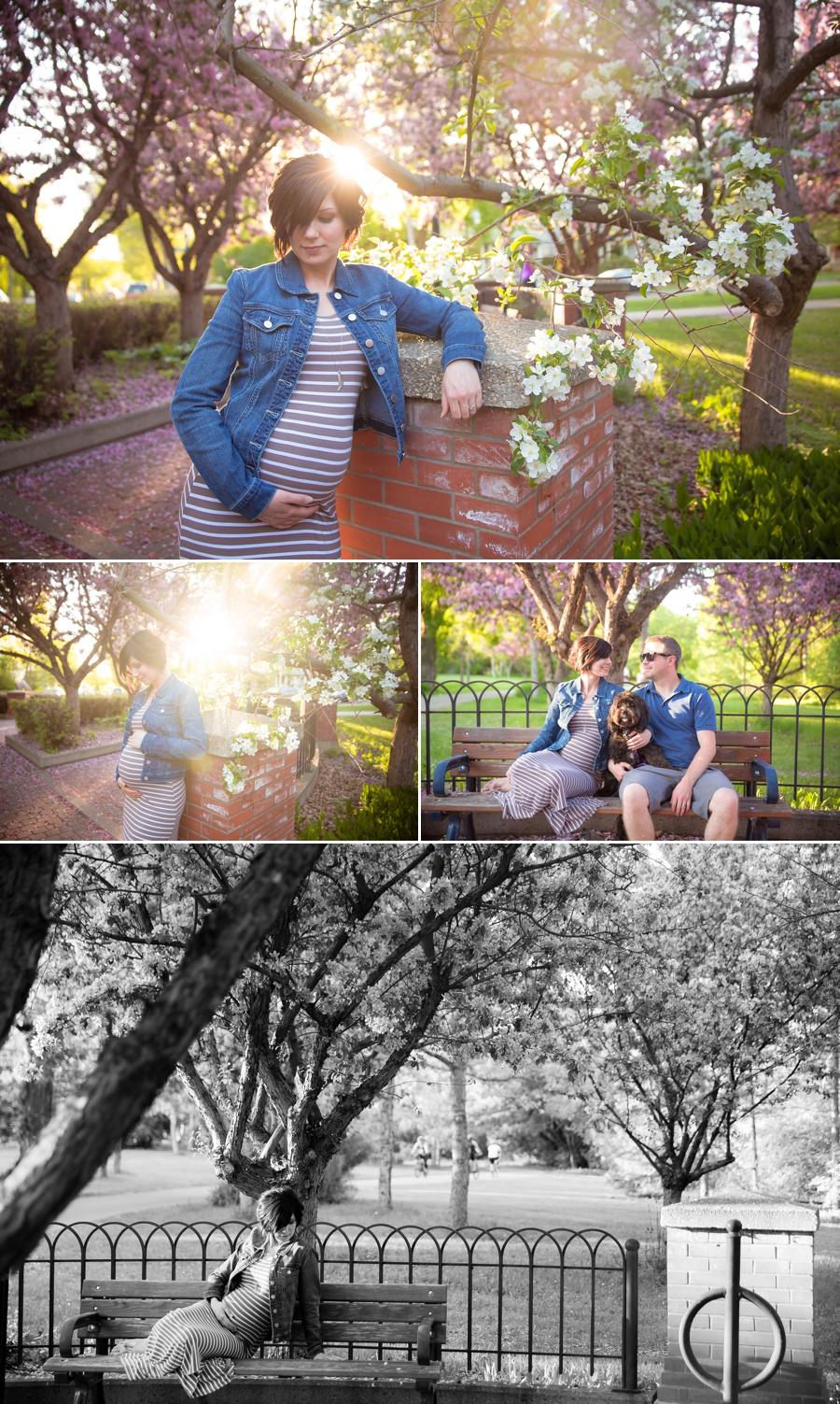 Edmonton Maternity Photographer 3