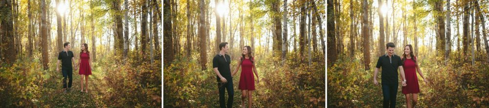 Hastings Lake Gardens Fall Engagement Photos
