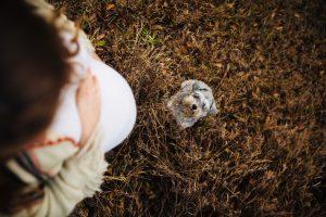 Edmonton Maternity Photographer 21