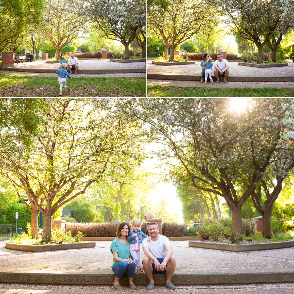 The Andersons in the Edmonton Blossoms